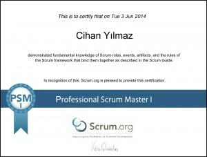 Scrum Masterlık Yolunda İlk Adım